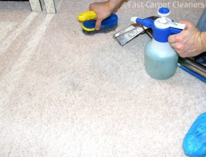 Carpet Cleaners Horsham