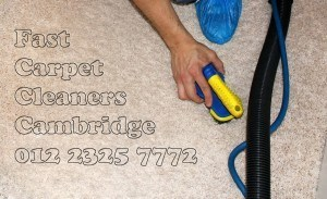 Carpet Cleaning Cleaners Cambridge