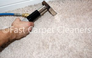 Carpet Cleaning Windsor