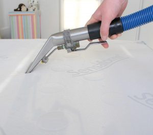 Mattress Cleaning Company Chelmsford